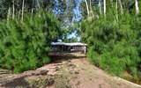 660 Alligator Drive - Photo 33