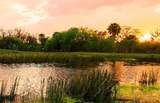 8903 River Preserve Drive - Photo 63