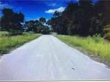 384 Hightower Road - Photo 4