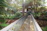 1709 Pelican Cove Road - Photo 1