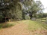 13879 Jacksonville Road - Photo 4