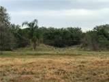 Palm View - Photo 3