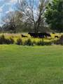 4905 County Road 660 - Photo 14