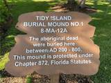 120 Tidy Island Boulevard - Photo 71