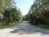 Lovering Avenue - Photo 5