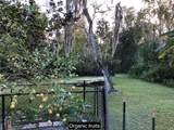 3643 Walden Pond Drive - Photo 41