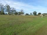 25134 Doredo Drive - Photo 3