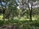 1652 Eagerton Drive - Photo 4