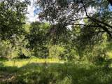 1652 Eagerton Drive - Photo 5