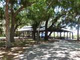 16214 Cayman Lane - Photo 7