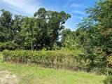 Cocoanut Avenue - Photo 1