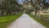 12917 Branch Road - Photo 9