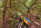 1504 Bowlees Cove - Photo 49