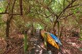 1504 Bowlees Cove - Photo 52