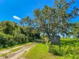 42110 Clay Gully Road - Photo 45