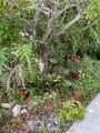 240 Gladiolus Street - Photo 40