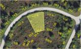 7252 Trumpet Circle - Photo 1