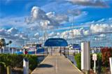 1330 Mediterranean Drive - Photo 9