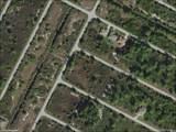 13339 Boabadilla Lane - Photo 2