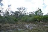 32101 Creek Trail - Photo 2