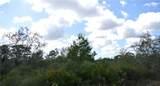 32101 Creek Trail - Photo 8