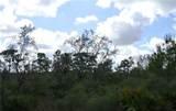 32101 Creek Trail - Photo 9