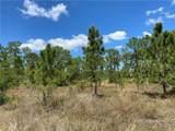 27502 Las Lomas Drive - Photo 21