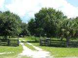 12307 County Road 763 - Photo 52