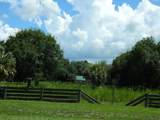 12307 County Road 763 - Photo 53
