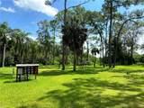 9071, 9075, 9079 Tamiami Trail - Photo 8
