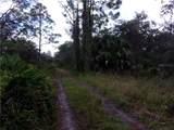 33569 Omega Lane - Photo 2