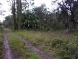 33569 Omega Lane - Photo 3