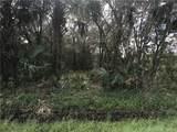 5266 Swaying Palm Drive - Photo 4