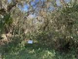 3422 Armadillo Trail - Photo 2