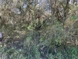3422 Armadillo Trail - Photo 5