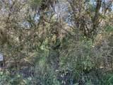 3422 Armadillo Trail - Photo 6