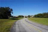 29021 Tortoise Trail - Photo 4