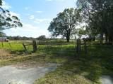 6971 County Road 660 - Photo 4