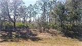 6501 Cypress Grove Circle - Photo 8
