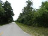 1211 Pine Wood Avenue - Photo 3