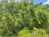 Everglades Terrace - Photo 11