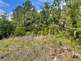 Everglades Terrace - Photo 13