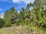 Everglades Terrace - Photo 14