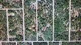 Big Tree Road - Photo 1