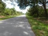95 Mcdill Drive - Photo 3