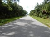 95 Mcdill Drive - Photo 9