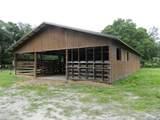 3375 Hidden Oak Drive - Photo 2