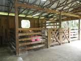 3375 Hidden Oak Drive - Photo 6