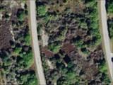 7064 Manniz Road - Photo 6