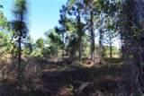13453 Carnauba Drive - Photo 3